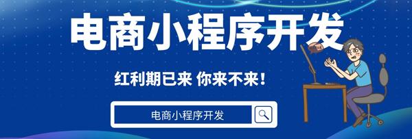 广州电商小程序开发