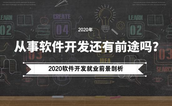 2020年软件开发行业前景剖析-抵奥云